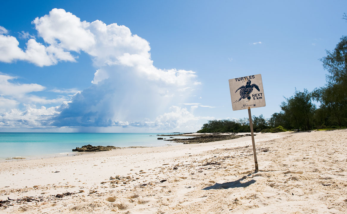 A sign on the beach marks the spot on Vamizi Island where the turtle hatchery begins.